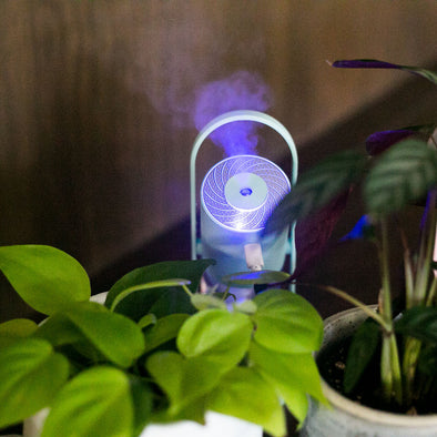 Light Up Plant Humidifier
