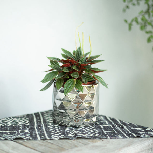 "Metallic Silver Pot - Fits 4"" pots"