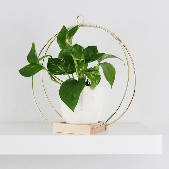 BRAID & WOOD: Plant Hanger