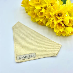The Lemon Cord Co-Ord Bandana
