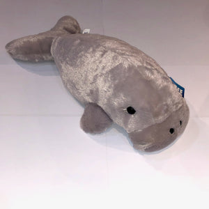 Dugong Medium 17in Grey
