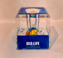 Load image into Gallery viewer, SEA LIFE Sydney Pen Holder Clownfish Blue Liquid