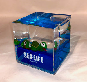 SEA LIFE Sydney Cube with Turtles in Blue Liquid