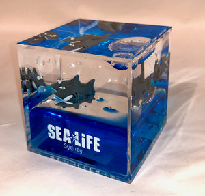 SEA LIFE Sydney Cube with Sharks in Blue Liquid