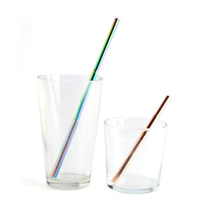 Eco-to-Go Steel Extendable Straw
