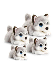 Load image into Gallery viewer, Husky Cuddle Pup Small 25cm