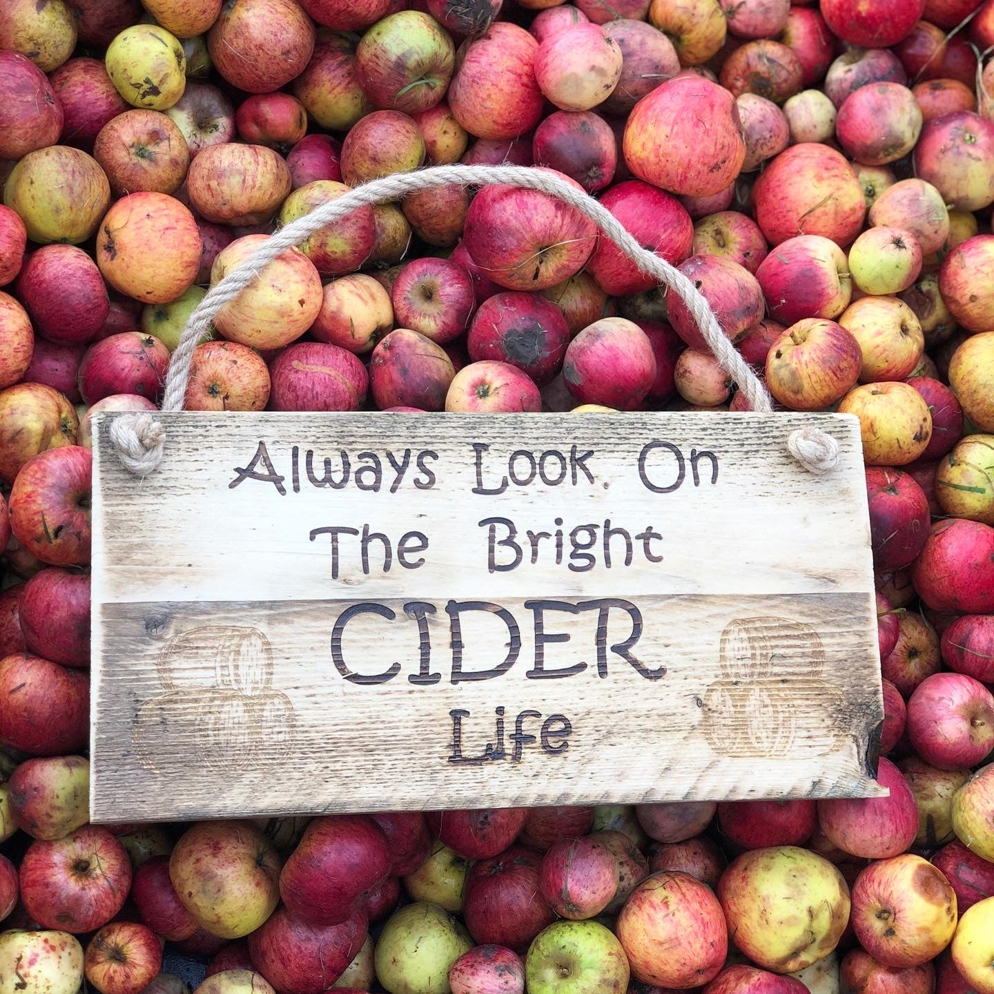 'ALWAYS LOOK ON THE BRIGHT CIDER LIFE' - Wooden Plaque