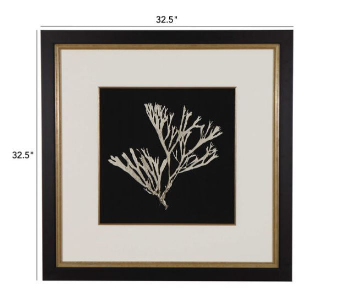 Ethan Allen Seaweed on Black II