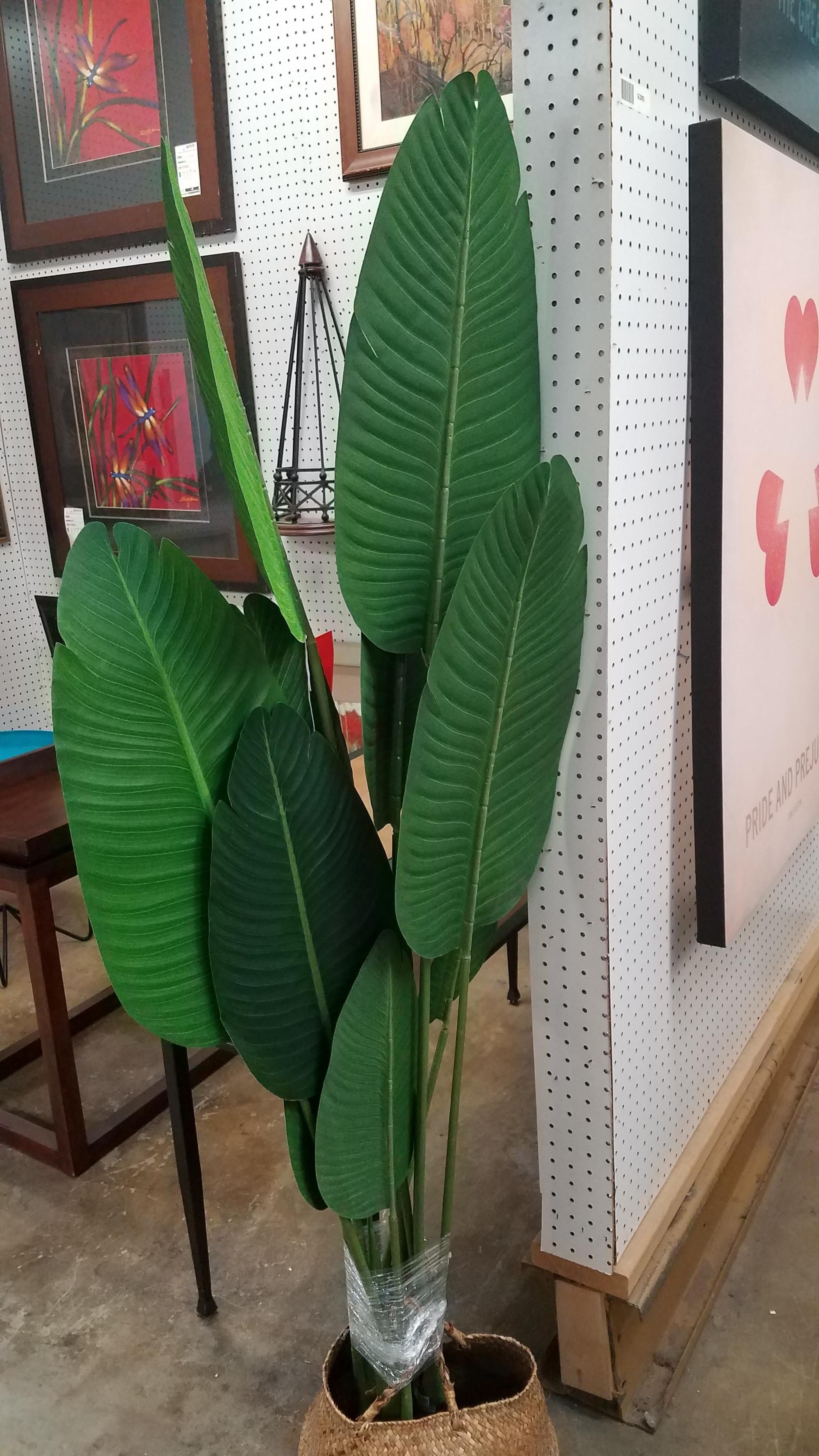 Banana Leaf 5' Tree