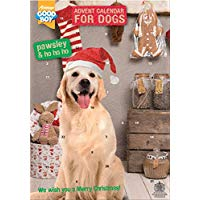 Dog Chocolate Advent Calendar - lakehomeandleisure.co.uk