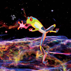Space Frog by Topher Straus - Topher Straus Fine Art