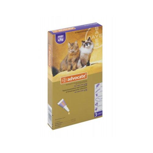 Advocate Kitten & Cat Tick, Flea & Worm Spot-On Treatment  1-4kg's