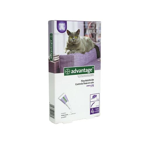 Advantage Cat Over 4kg Flea Treatment