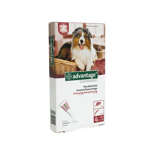 Advantage Dog 10-25kg Fleas & Lice Treatment