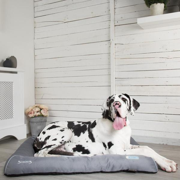 Scruffs Self-Cooling Dog Bed Dropawf