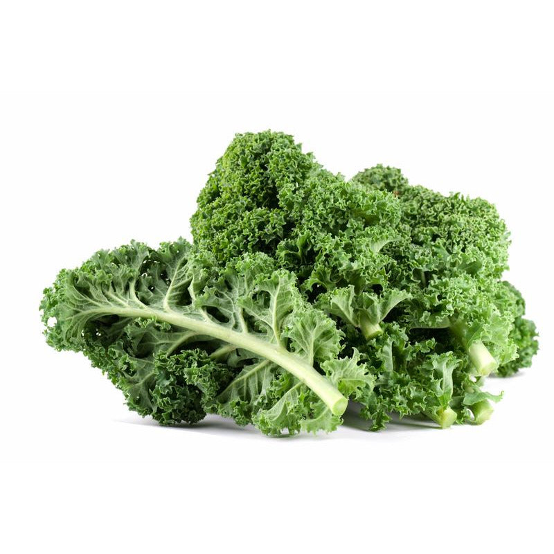 Kale - Curly