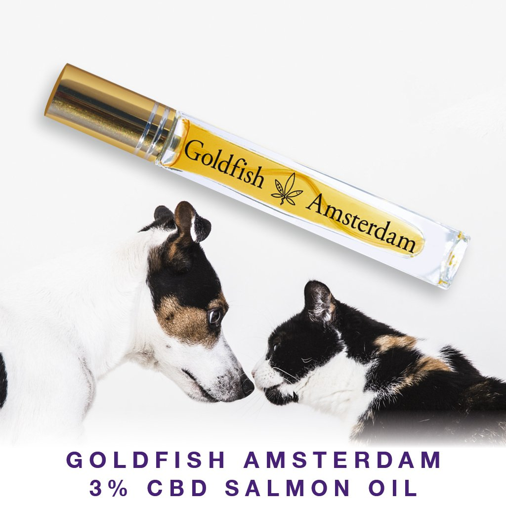 Pop-Up | CBD Salmon Oil for Cats by Goldfish