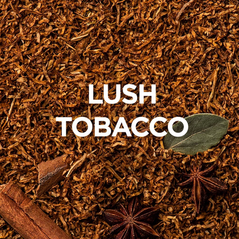 Image of Alpha Pods - Lush Tabacco | Alpha NZ | Vapepenzone