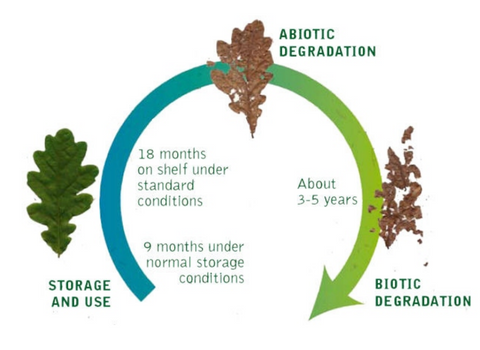 lifecycle of Biolefin