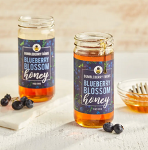 Load image into Gallery viewer, Blueberry Blossom Honey 11 Oz