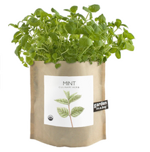 Load image into Gallery viewer, Mint Garden in A Bag