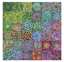 Load image into Gallery viewer, Succulent Spectrum Puzzle