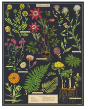 Load image into Gallery viewer, Herbarium Puzzle
