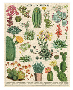Cacti and Succulents Puzzle