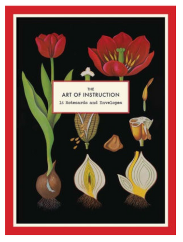 Art of Instruction Notecards