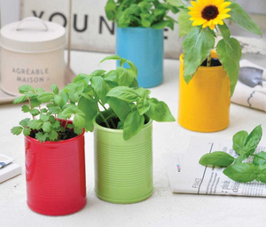 Can and Plant Grow Kit