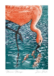 Flamenco Flamingo Card