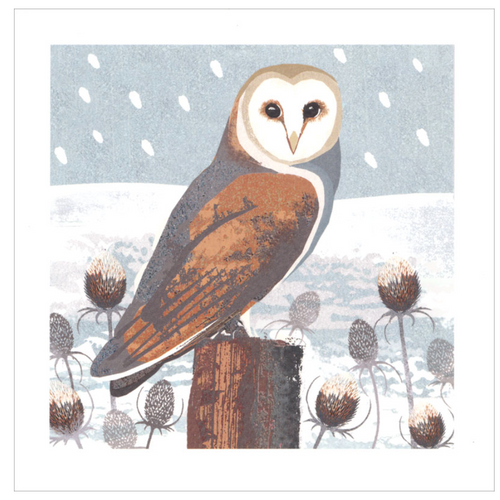 Owl Winter Cards Box of 8