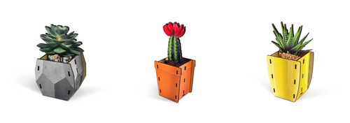 Pop Plants Pencil Holder