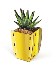 Load image into Gallery viewer, Pop Plants Pencil Holder Aloe