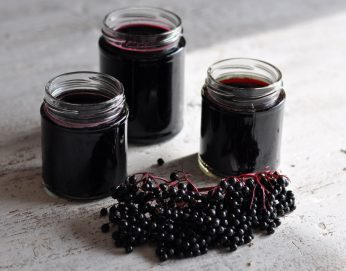 Elderberry Syrup 16oz