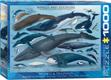 Whales and Dolphins 1000 Piece Puzzle by Eurographics
