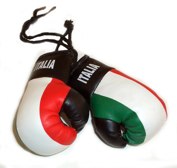 Mini Italia Boxing Gloves - Guidogear
