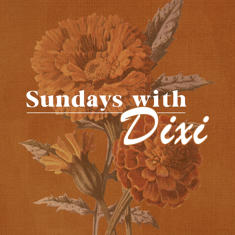 Sundays with Dixi | Week 1 Roundup