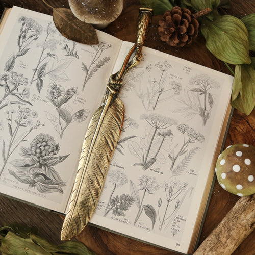Vintage Feather & Bird Claw Bookmark / Letter Opener | UK ONLY