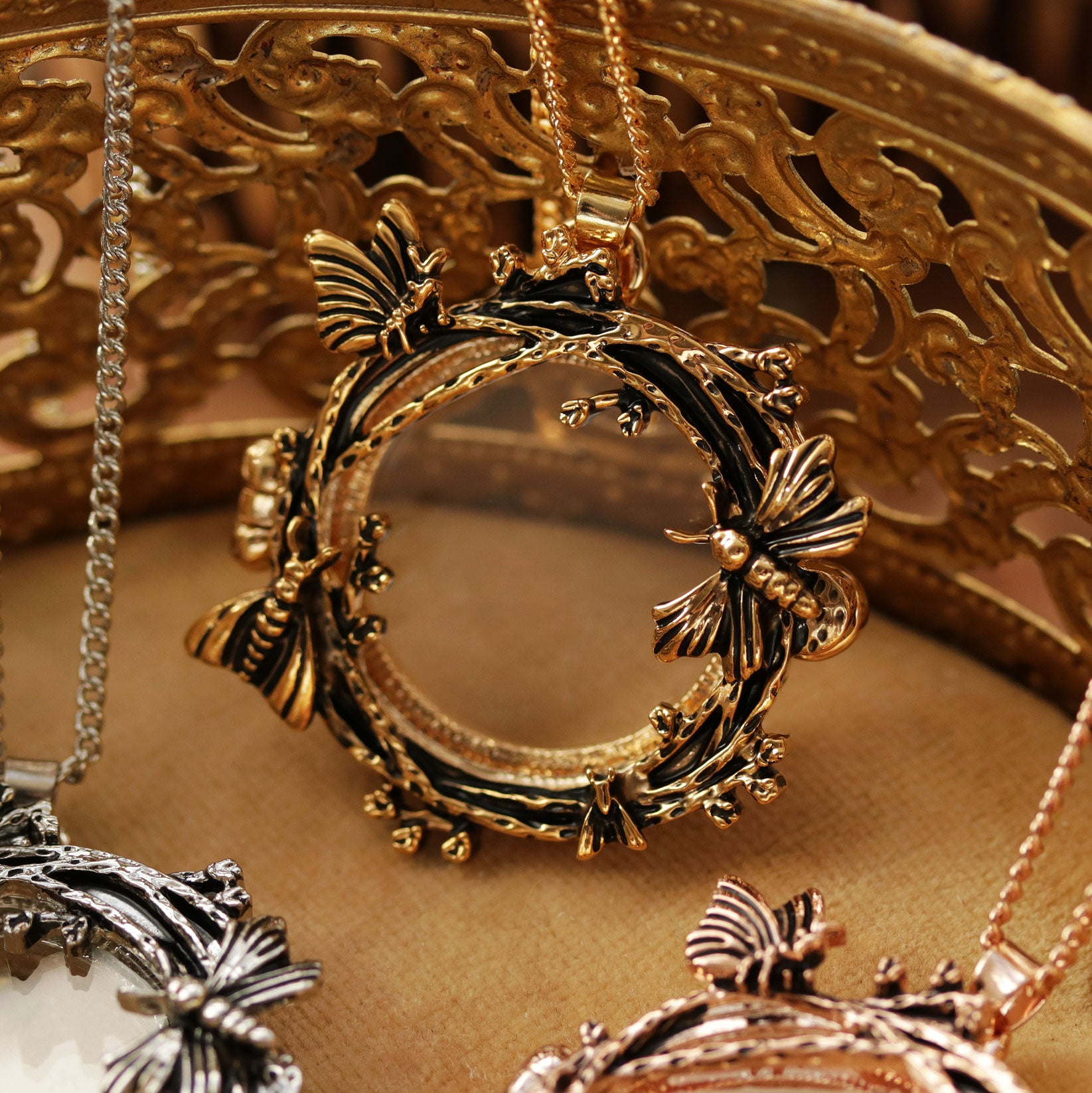SOLD OUT Nocturnal Moth Window Locket Necklace | Talent Scout Winner