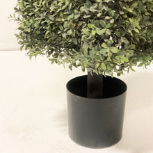 Load image into Gallery viewer, Square Boxwood Topiary