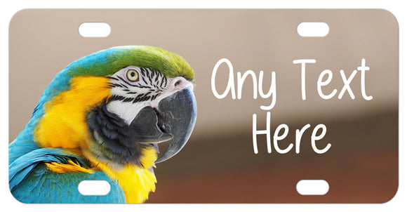 Photo of Blue and Gold Macaw with green cap and any text to personalize the plate