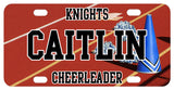 personalized cheer license plate. Megaphone and PomPoms on the track portion of the football field. printed with any name and custom text