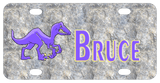 Stone background with purple Velociraptor dinosaur on left and name on right