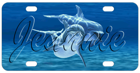 Two dolphins personalized license plate with clear text.
