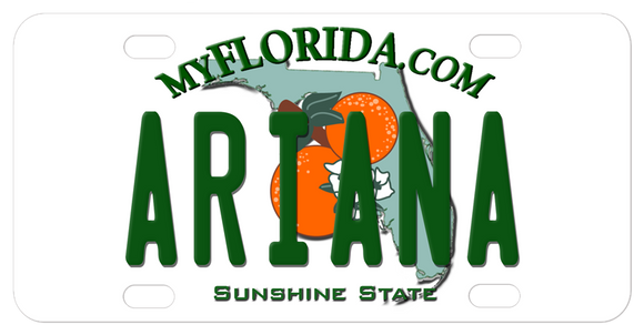 Personalized My Florida License Plate with any name and county