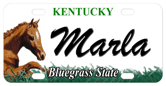 Kentucky license plate circa 2007 with Foal on left and any name in center.