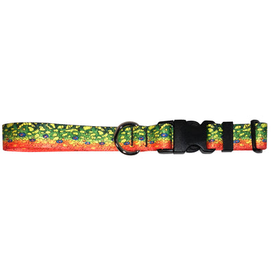 Brook Trout2 Dog Collar