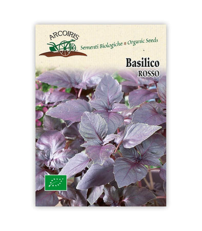Basilico Rosso - Italian Sprout