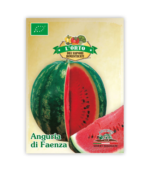 Watermelon from Faenza